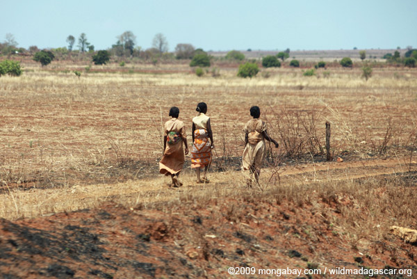 Women walking from the fields