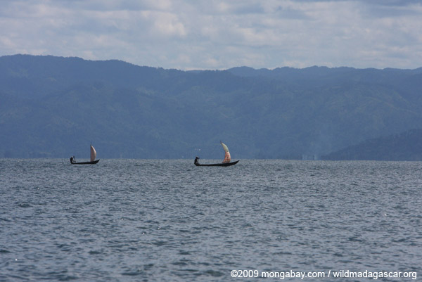 Fishermen sailing their pirogues in Madagascar's Antongil Bay