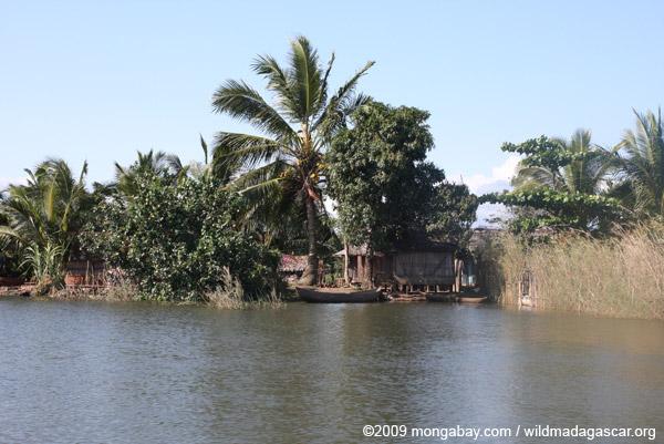 Riverside huts in Maroantsetra