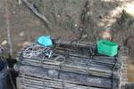 Fish trap -- sabah_3377