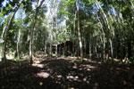 Cave camp ground at MESCOT