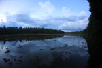 Oxbow lake in Borneo -- sabah_3566