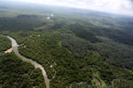 Oil palm plantation and mangroves in Borneo -- sabah_aerial_0019