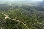 Oil palm plantation and mangroves in Borneo