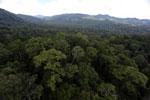Rainforest in Borneo -- sabah_aerial_0240