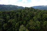Rainforest in Borneo -- sabah_aerial_0254