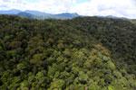Rainforest in Borneo -- sabah_aerial_0402