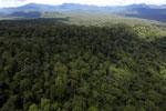 Rainforest in Borneo -- sabah_aerial_0449