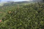 Deforestation for palm oil in Borneo -- sabah_aerial_0567