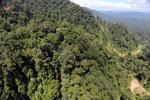 Logging road in Borneo -- sabah_aerial_0646