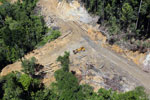 Bulldozer at a conventional logging site in Borneo