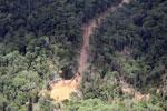 Logging road in Borneo -- sabah_aerial_0814