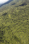Tropical rain forest in Borneo -- sabah_aerial_0873