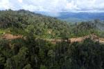 Logging road in Borneo -- sabah_aerial_0900