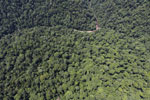 Borneo rainforest river -- sabah_aerial_1162