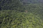 Borneo rainforest river -- sabah_aerial_1169
