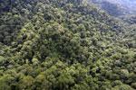 Borneo rainforest -- sabah_aerial_1612