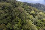 Borneo rainforest -- sabah_aerial_1630