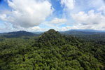 Borneo rainforest -- sabah_aerial_1808
