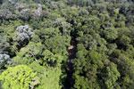 Imbak Canyon -- sabah_aerial_1999