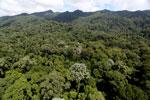 Imbak Canyon -- sabah_aerial_2001