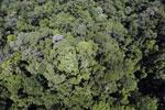 Imbak Canyon -- sabah_aerial_2097