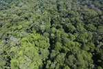 Imbak Canyon -- sabah_aerial_2106