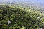 Imbak Canyon -- sabah_aerial_2144
