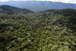 Imbak Canyon -- sabah_aerial_2159
