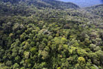 Imbak Canyon -- sabah_aerial_2164