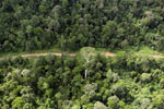 Aerial view of heavily logged rainforest -- sabah_aerial_2719