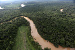 Clearing for oil palm along the Kinabatangan River  -- sabah_aerial_2919