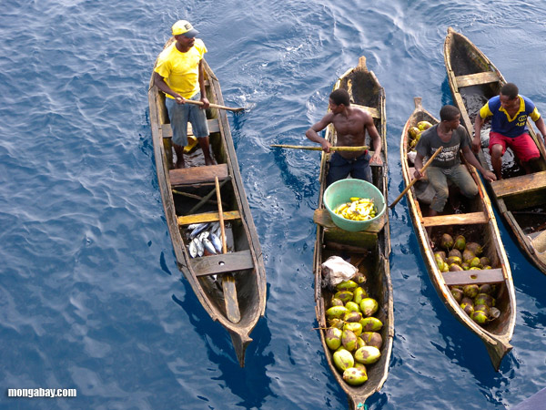 Fishermen selling fish in pirogues off the coast of Congo