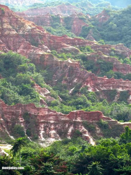 Congo Gorge