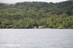 Cabins on Isla Gorgona