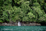 Waterfall entering the turquoise sea and rainforest of Gorgona Island