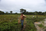 Cowboy fishing with a throw net [colombia_3584]