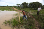 Cowboy fishing with a throw net [colombia_3585]