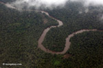 Aerial view of a rainforest river in Colombia's Choco