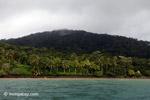 Gorgona island [colombia_4128]