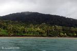 Gorgona island [colombia_4224]