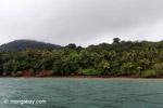 Gorgona island [colombia_4227]