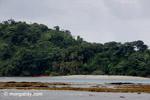 Isla Gorgona [colombia_4512]