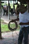 Cowboy [colombia_6486]