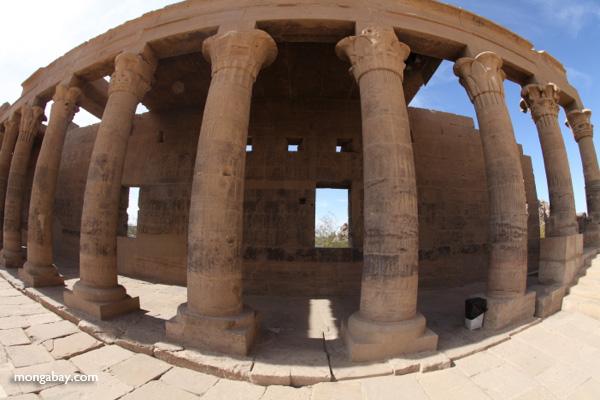 Philae Temple [egypt_0084]