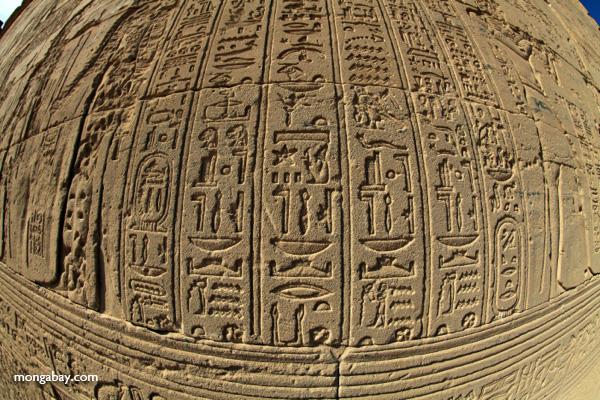 Philae Temple [egypt_0144]