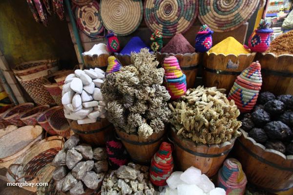 Spice market in Aswan [egypt_0242]