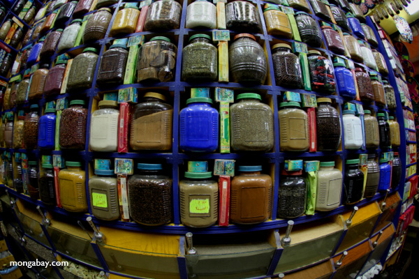 Jars of spices at a market in Aswan