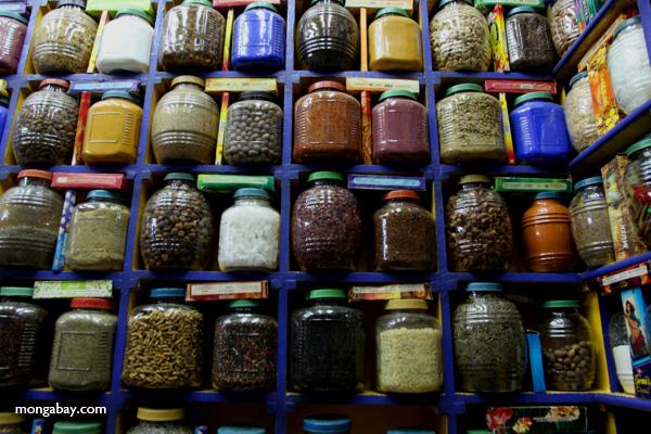Spice market in Aswan [egypt_0259]