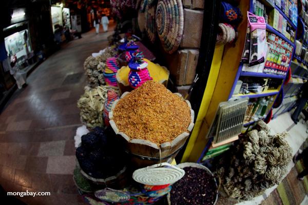 Spice market in Aswan [egypt_0272]